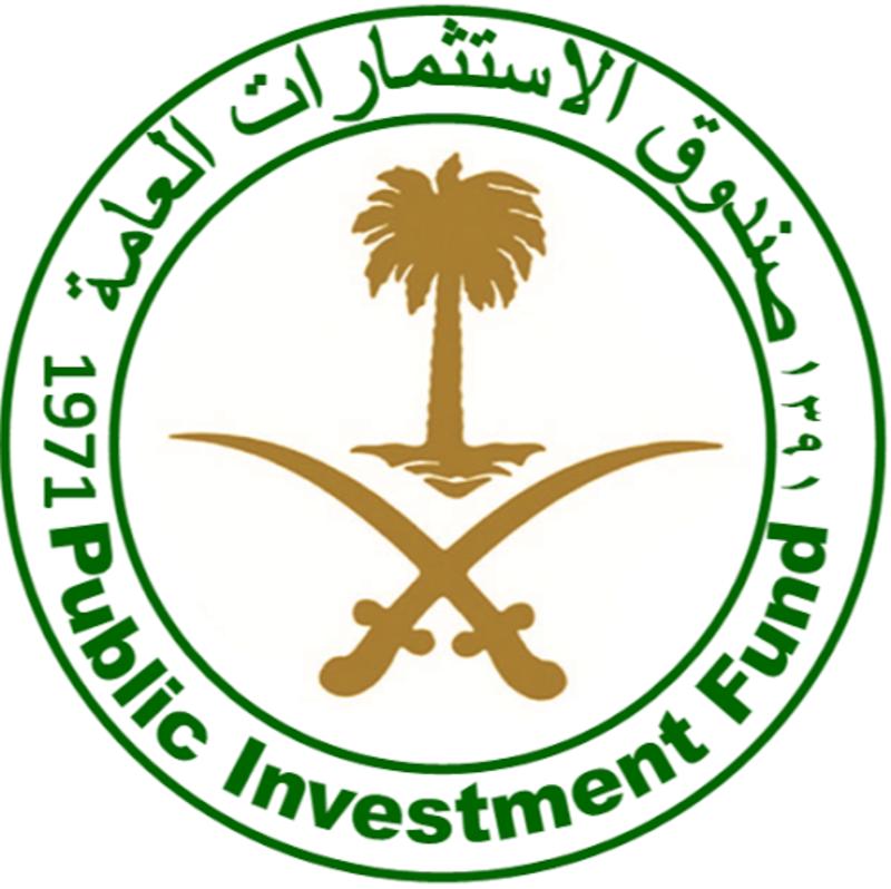 الاستثمارات-العامة